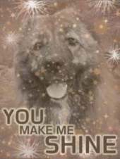 youmakemeshineaward